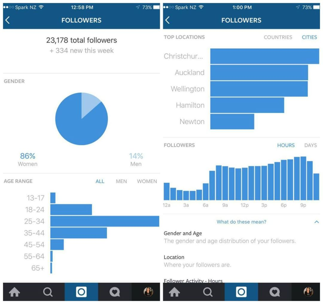 Track and Analyze Instagram Analytics