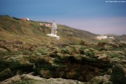 Goéland - La Crevasse à Equihen