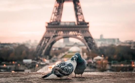 Pariz - Z letalom na poti
