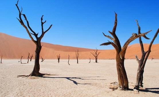 Namibija - Z letalom na poti