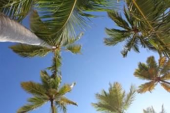 Dominikanska republika - Z letalom na poti