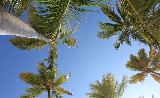Dominican_Republic-Z_letalom_na_poti