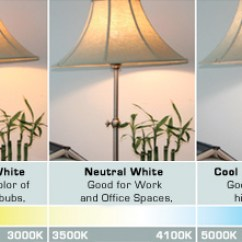 Best Led Light Bulbs For Living Room Feature Wall Paint Ideas Bulb Any In Your Home Let Design Every Is Different Having A Unique And Individual Personality Based On The Activities That Take Place Lighting Choices You Make