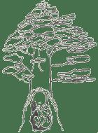 Temps Séquoias grossesse