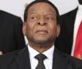 Afrique du Sud: Le roi des Zoulous récuse les réformes foncières