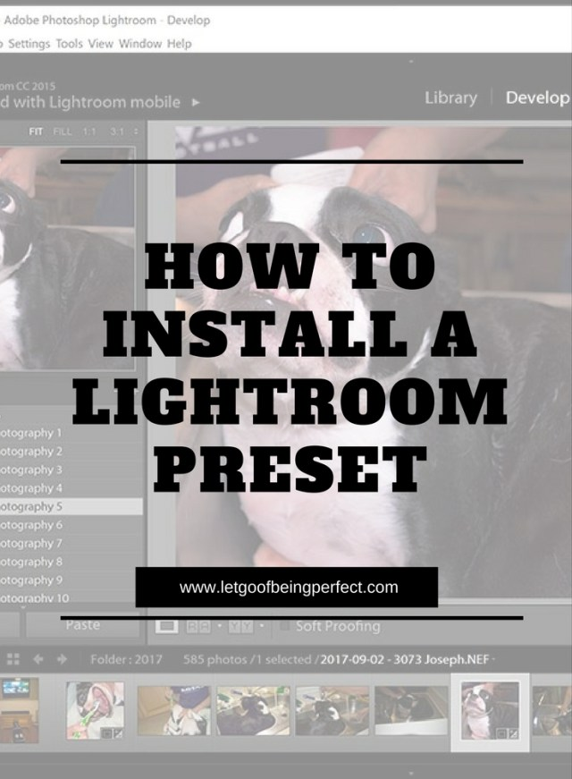 How To Install Lightroom Presets - This simple photography tutorial will teach you how to install a Photoshop Lightroom preset. Learn tips for your blog photography. Photoshop, Lightroom, and Elements ideas to modify and fix up your pictures and images. Explore the web site for more step-by-step tutorials, especially upcycling and refashioning how-tos. Also check out my blogging & photograph tips! http://letgoofbeingperfect.com