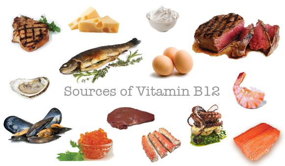 Foods High in Vitamin B12 (Rich Source of Vitamin B12)