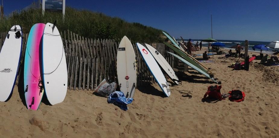 Surfy na Ditch Plains
