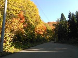 湯沢市秋ノ宮108号線から県道310号線へ1