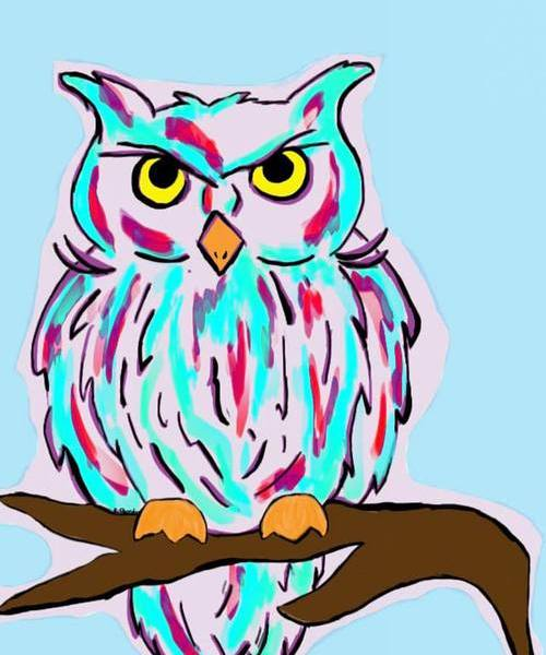Owl was drawn digitally by Letitia Pfinder