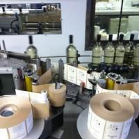 Custom Evolve Wine Bottle Labels