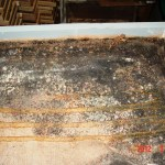 Mold on inside of Attic Box.