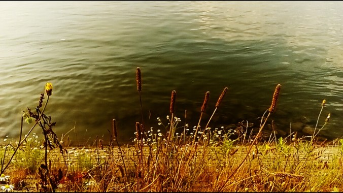 "ALT: ""leto reka"""