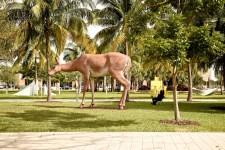 Miami-LeTONE 13