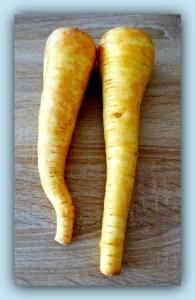 Le top des testeuses Pot au Feu avec des Légumes Oubliés 100% Terroirs