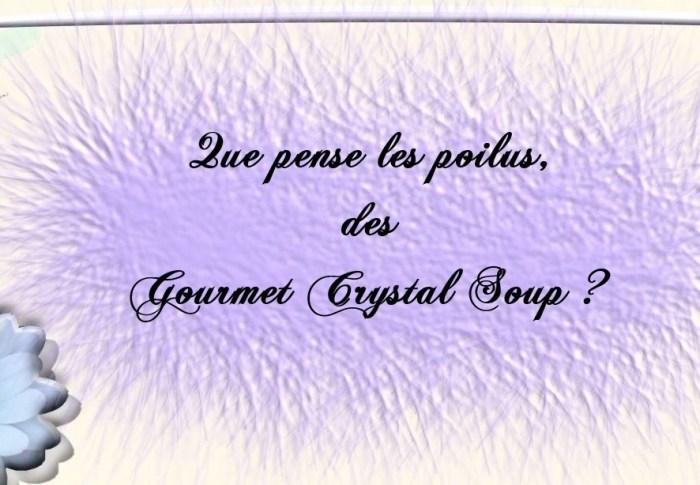 Que pense les poilus, des Gourmet Crystal Soup ?