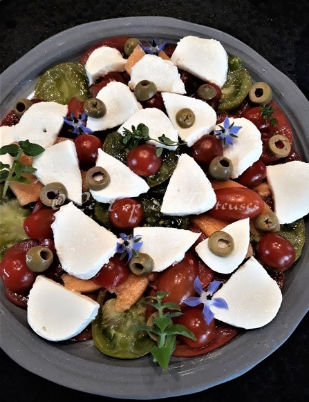 Ma Petite Saladerie Terre Vivante