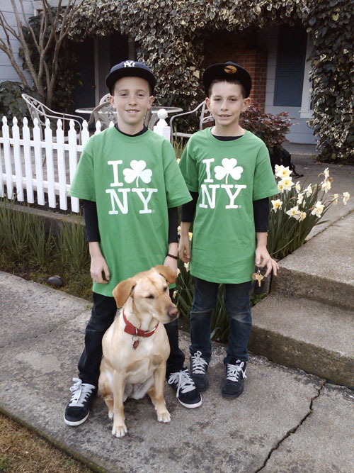 Karen's sons and Olive before school, celebrating St. Patrick's Day