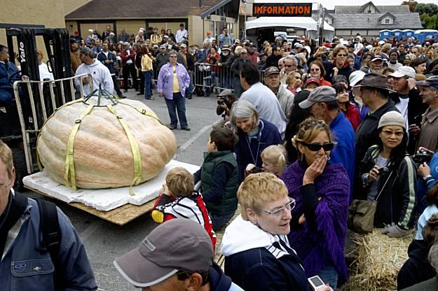 Pumpkin Weigh-off Winner (source: sfgate.com)