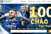 Letou chính thức trở thành nhà tài trợ câu lạc bộ esports Fnatic