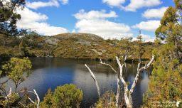 Cradle-park-tasmanie (12)