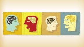 La vida emocional del cerebro