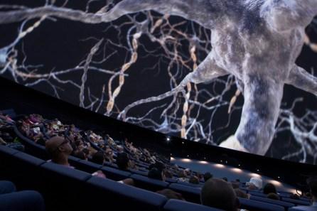 Frost Planetarium (interior)_Photo by Interspectral_Valentin Mellstrom