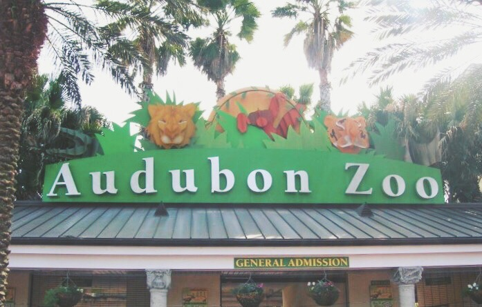 Audubon Zoo in New Orleans