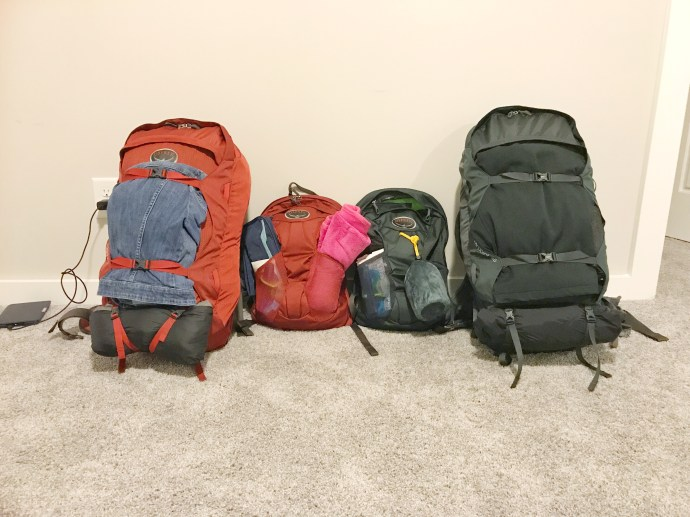 My pack (red) Eric's pack (gray)