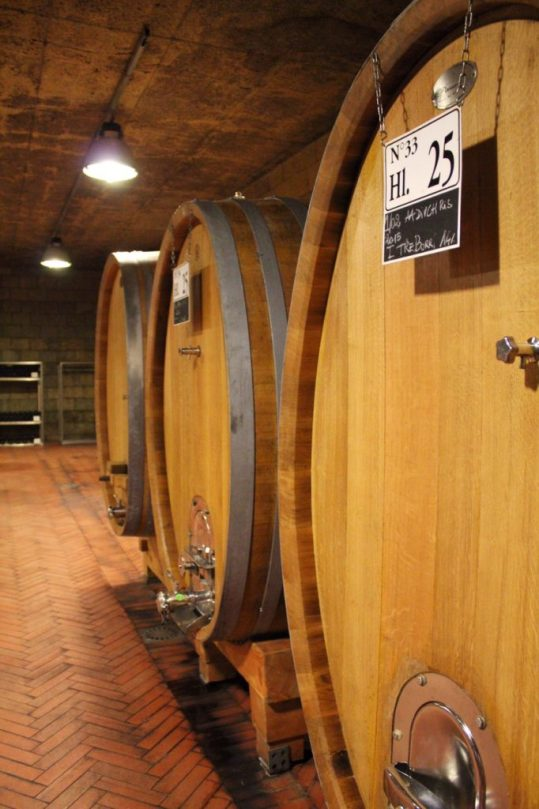 Barrels of wine in Tuscany Italy