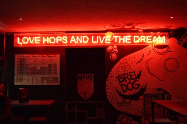 Brew Dog pub in Florence Italy