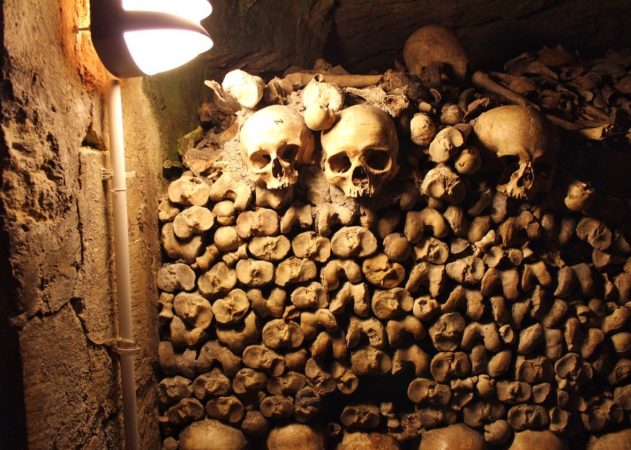 Bones inside the Catacombs in Paris France
