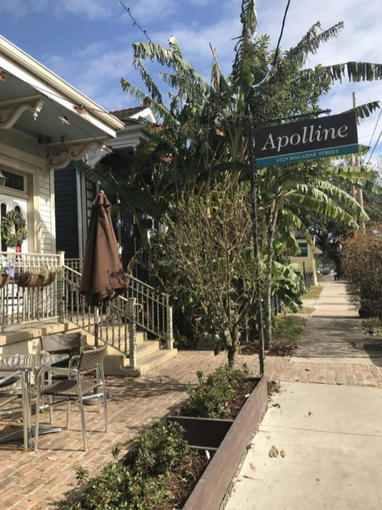 Apolline in the Garden District in New Orleans