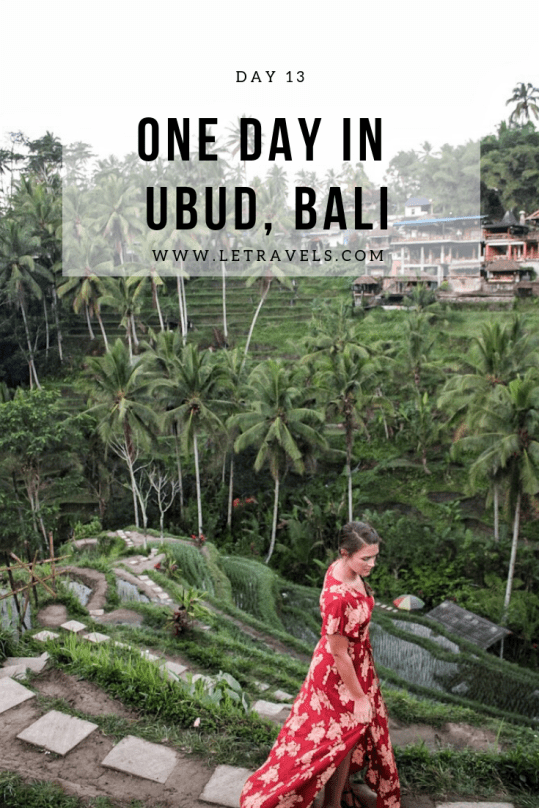 One day exploring Ubud, Bali | See temples, Tegalalang Rice Terrace, waterfalls, and more! | #luwakcoffee #bali #ubud #riceterrace #indonesia #travelguide