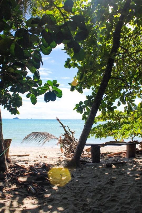 The beach at Manuel Antonio National Park