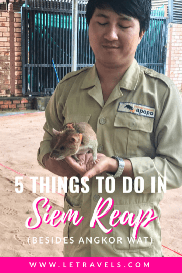 Things to do in Siem Reap | #siemreap #cambodia #travel