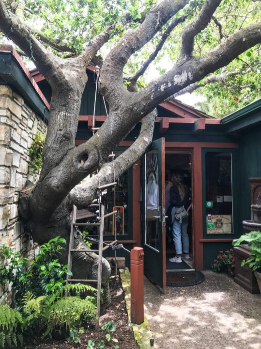 The Treehouse Cafe in Carmel California