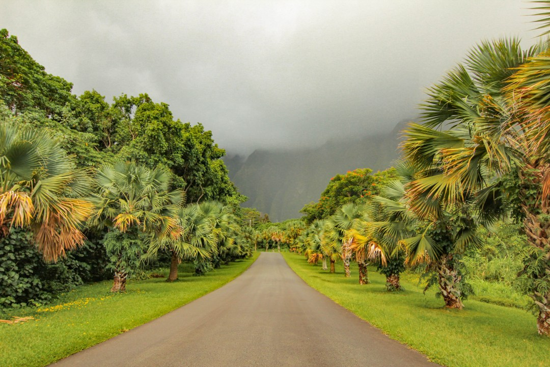 the hoomaluhia botanical garden