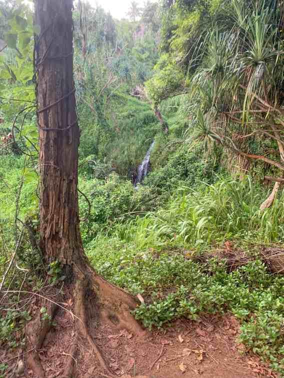 queens bath trail hawaii