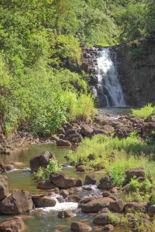 waimea falls in oahu hawaii