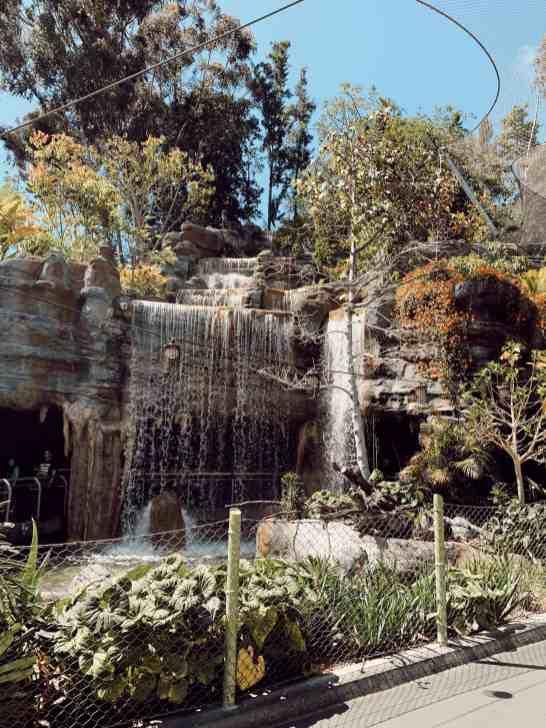 san diego zoo waterfall