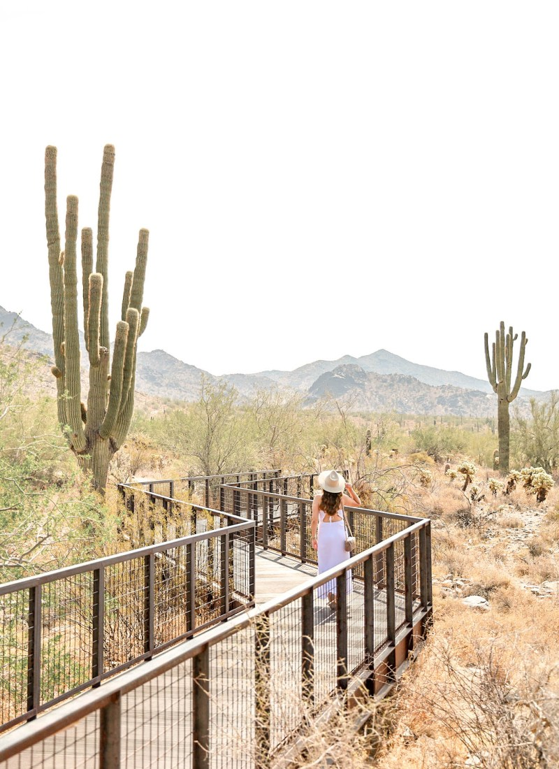 A Weekend Guide to Scottsdale, Arizona