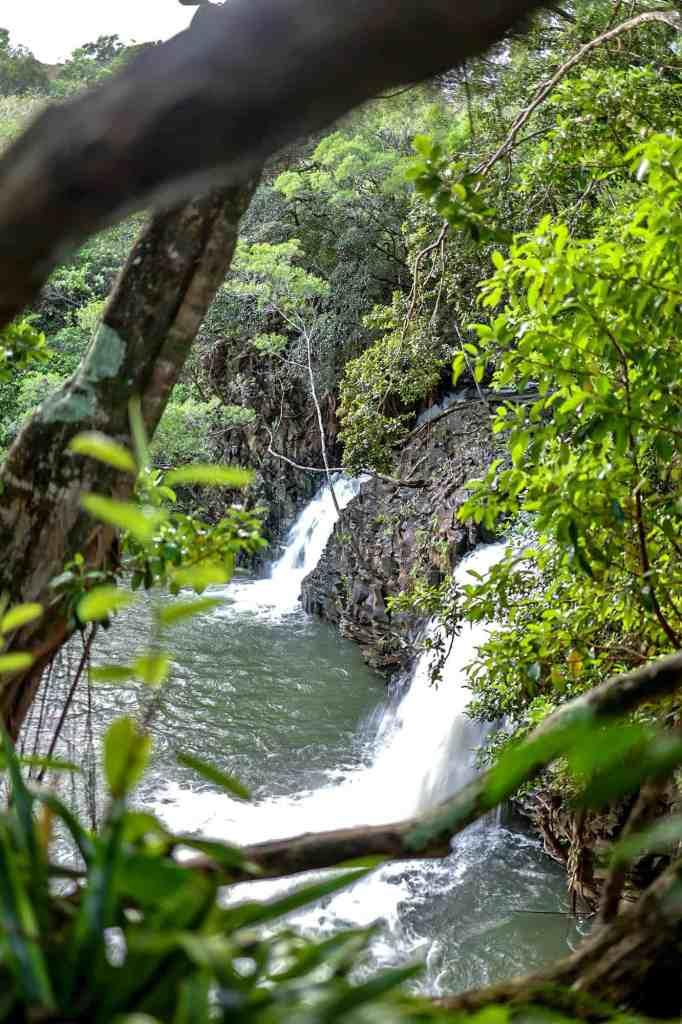 twin falls road to hana