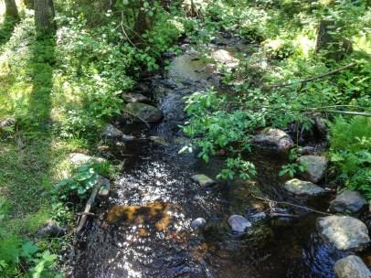Bäcken genom Trolldalen