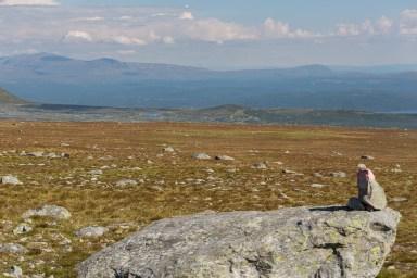 Utsikt från Barturtte.