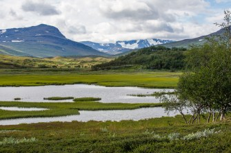 Våtmark vid Viejeluoppal