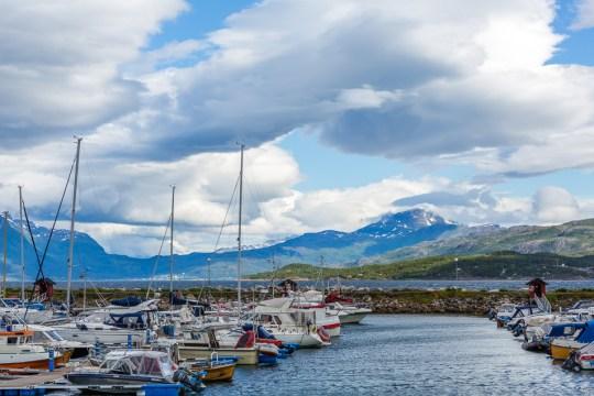 Narviks marina