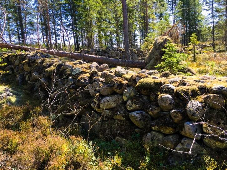 Stenmuren på Björkberget