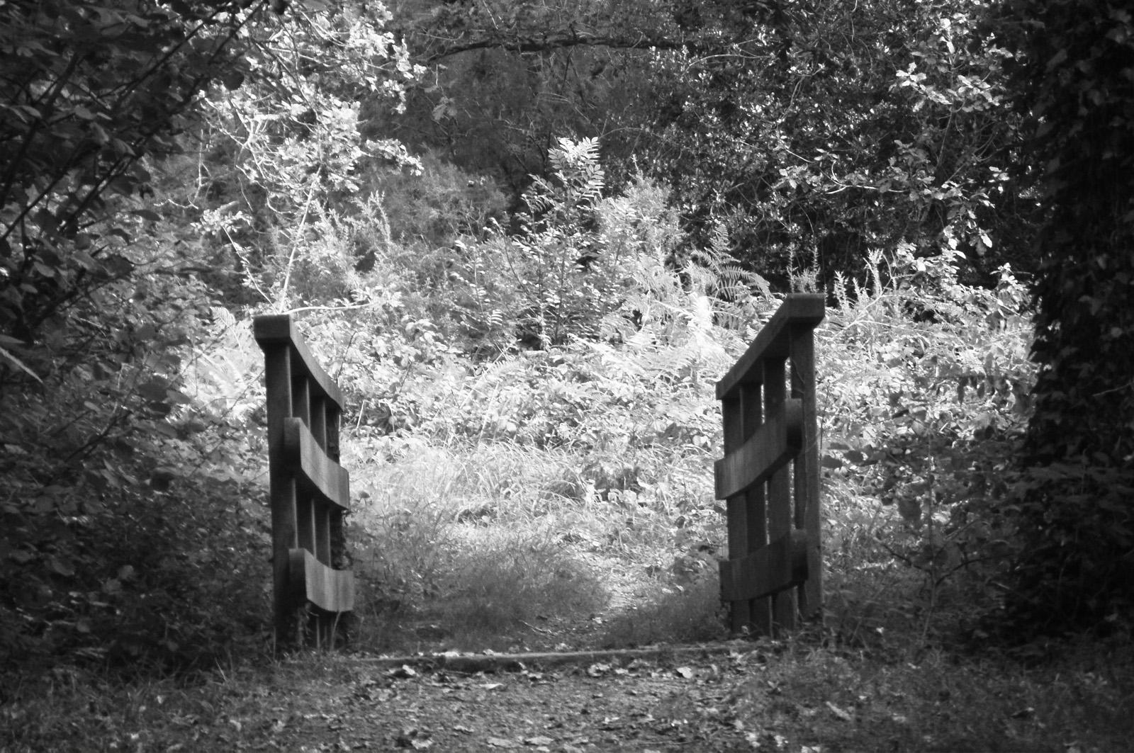 petit_pont_Trevoux