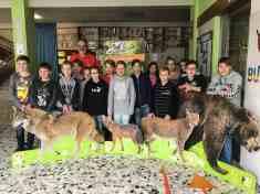 EWS - Lets Get Wild NMS Seckau -11083_